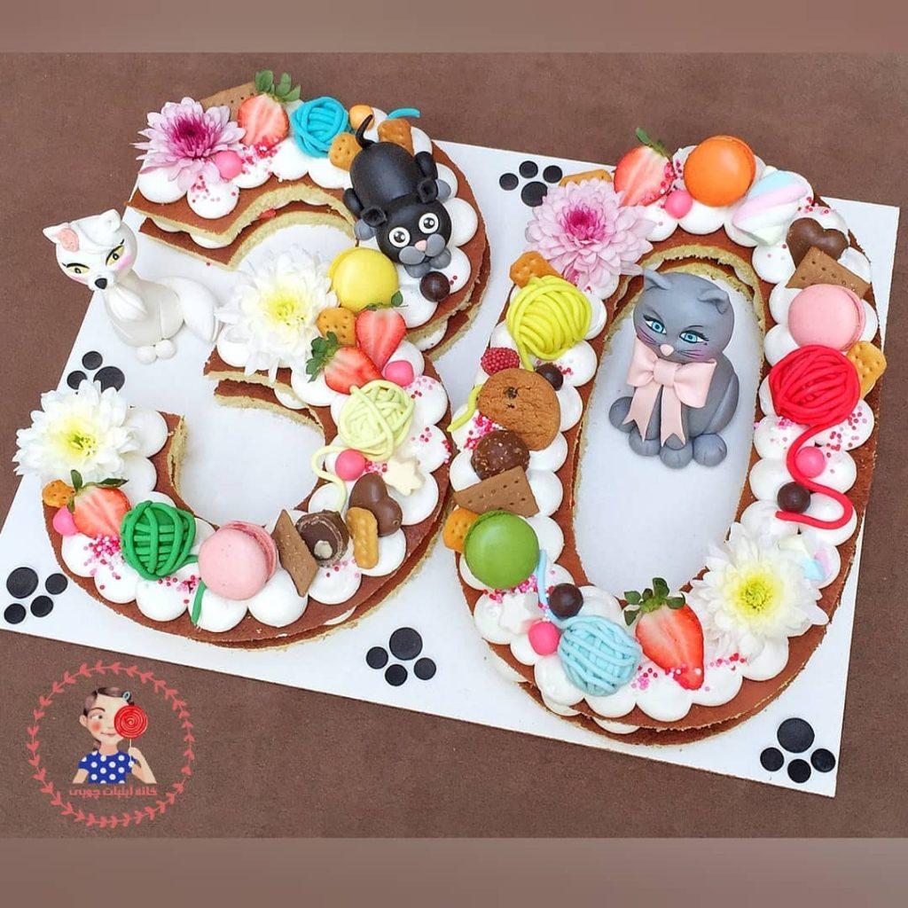 کیک عدد طرح گربه