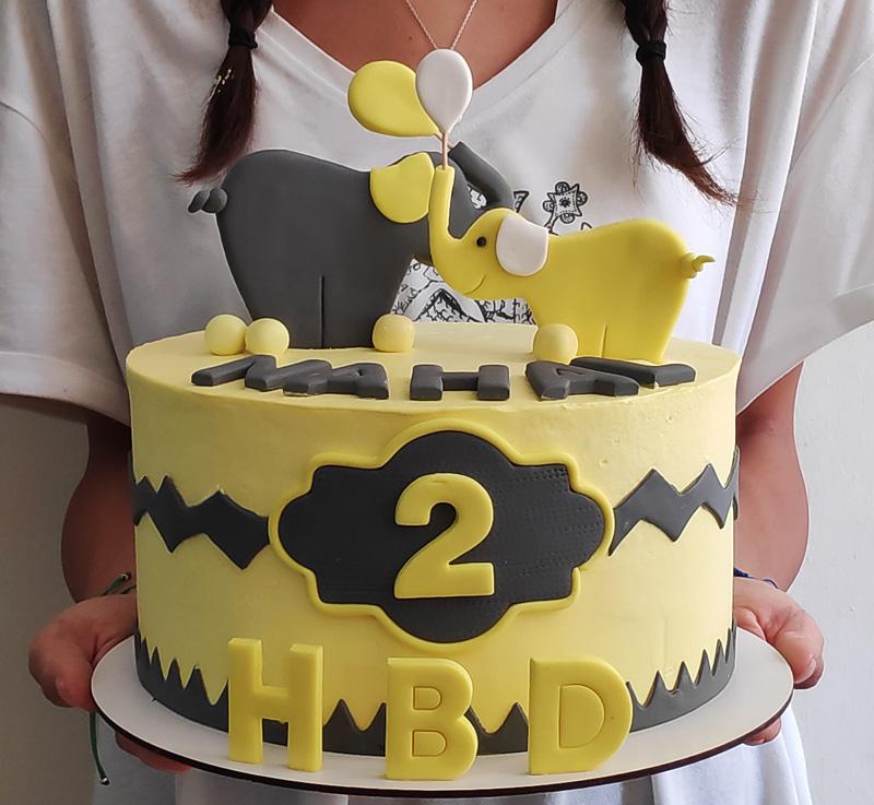 کیک خوشگل فیل کوچولوی زیبا