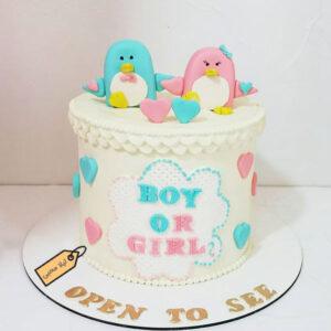 کیک فوندانت تعیین جنسیت پنگوئن