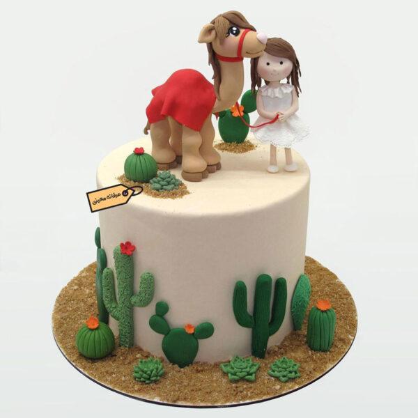 کیک تگزاس خانم معینی
