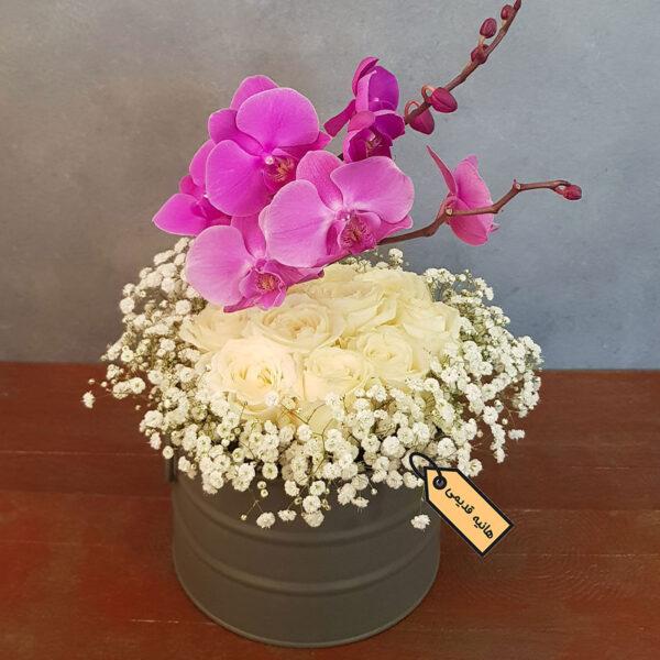 گل رز و ارکیده